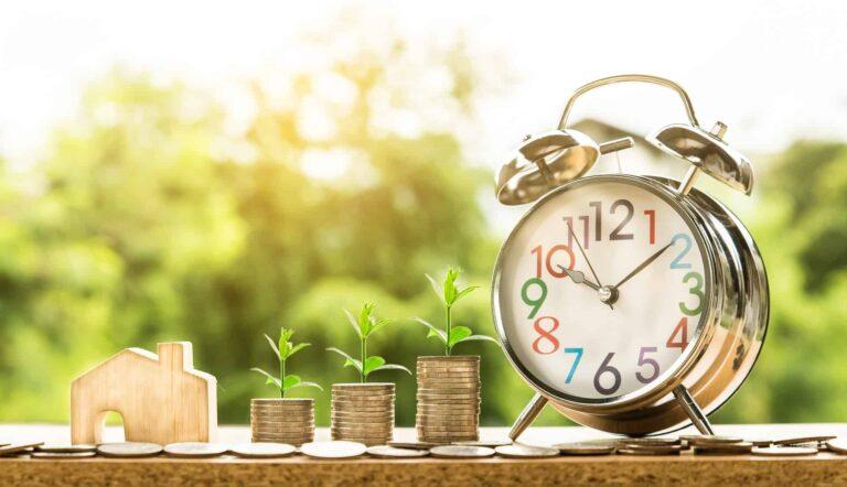 abrys i oszczędność pieniędzy